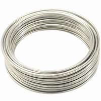 WIRE STAINLESS 19GA 30 FT