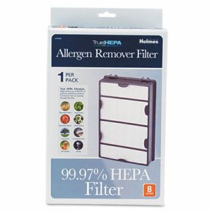 Replacement Modular HEPA Filter for Air Purifiers, 10 x 6 1/2 x 2