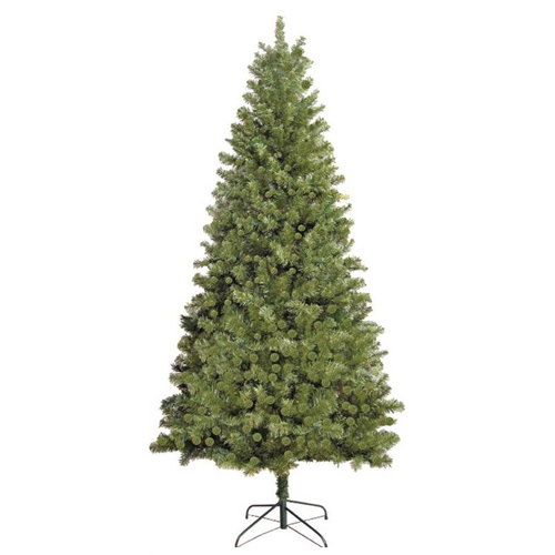 TREE DOUGLAS FIR 7FEET