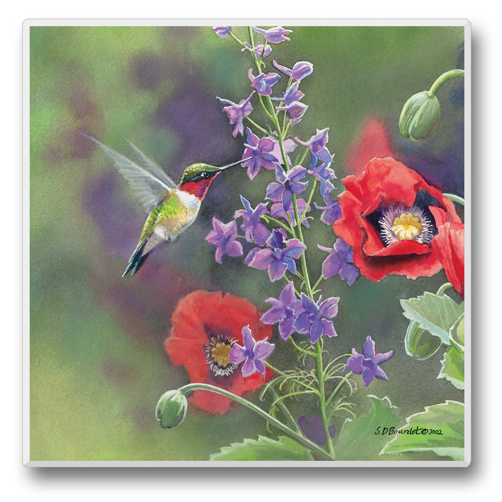 Take Flight Coasters Hummingbirds with Purple and Red Flowers Set of 6