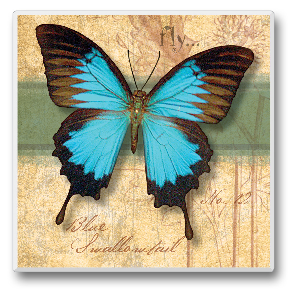 Flutter By Coasters Blue and Black Butterfly with Green Stripe Set of 6