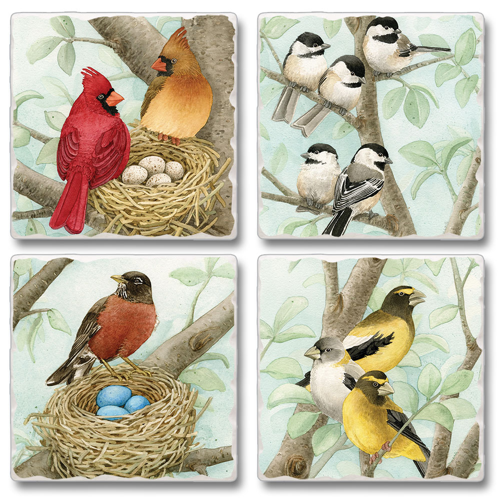 Songbirds Assorted Square Stone Coasters Set of 4