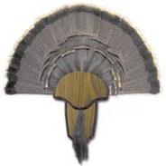 Hunters Specialties Turkey Tail Beard Mount Kit 00849