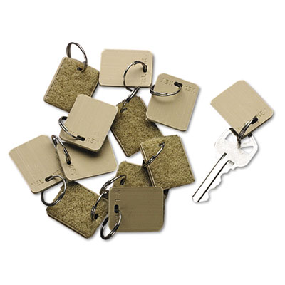 Extra Blank Hook & Loop Tags, Security-Backed, 1 1/8 x 1, Beige, 12/Pack