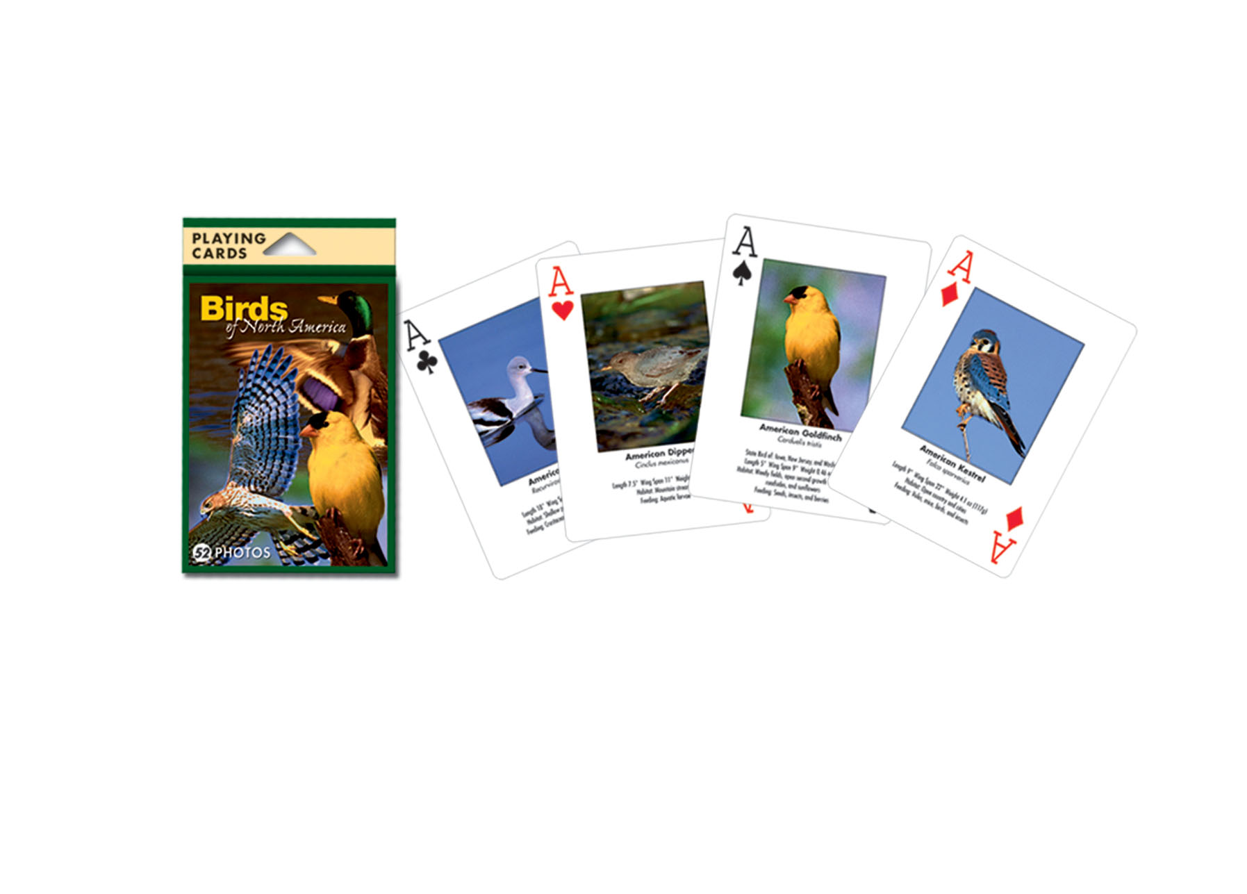 Playing Cards Birds North American
