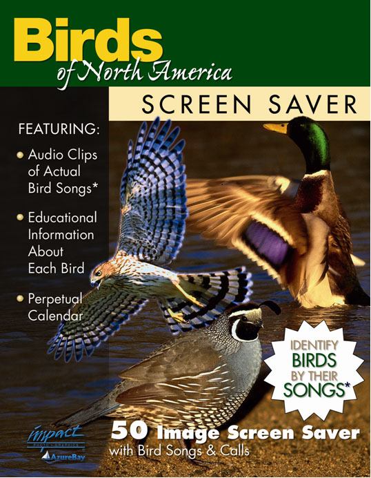 Screen Saver Birds of North America