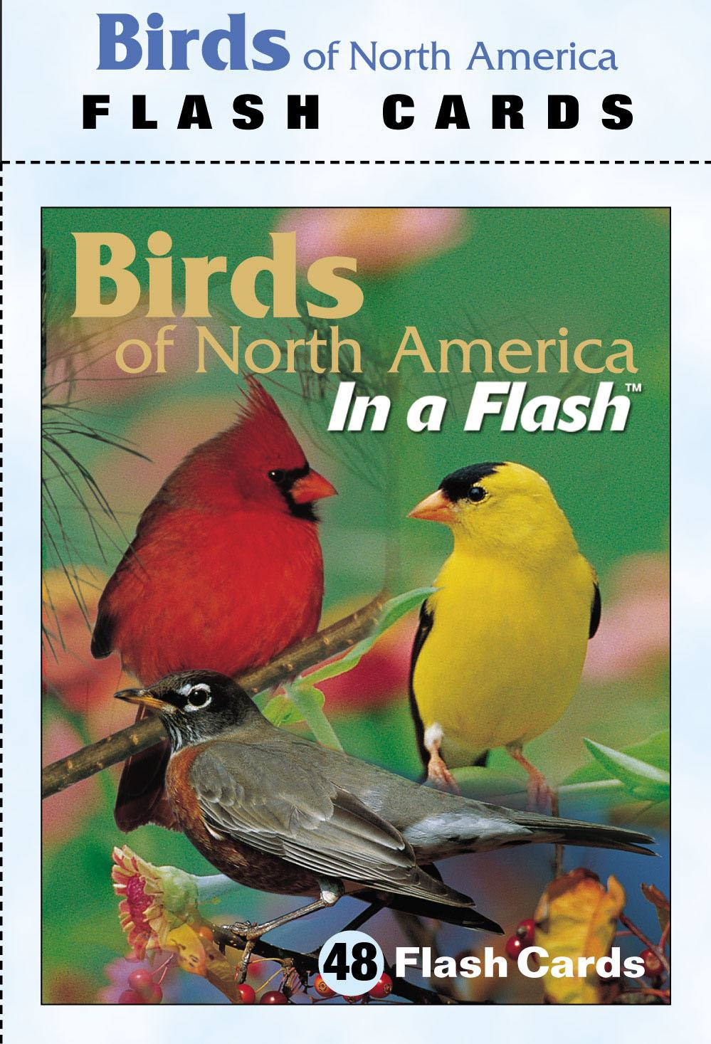 Flash Cards Birds North American