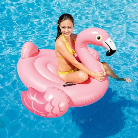 Flamingo Ride-On Pink