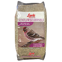 LYRIC SUNFLOWER KERNEL 25LBS