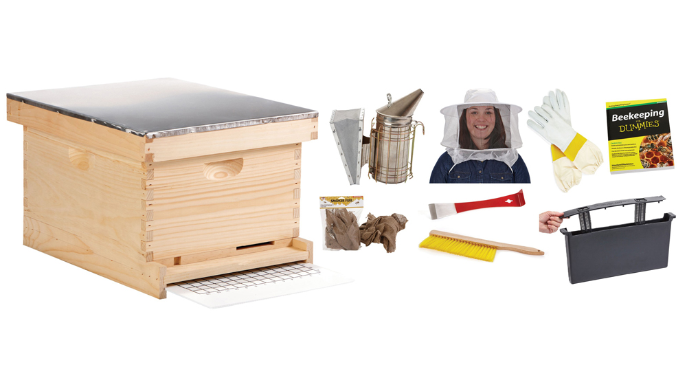 10 Frame Beginner Hive Kit