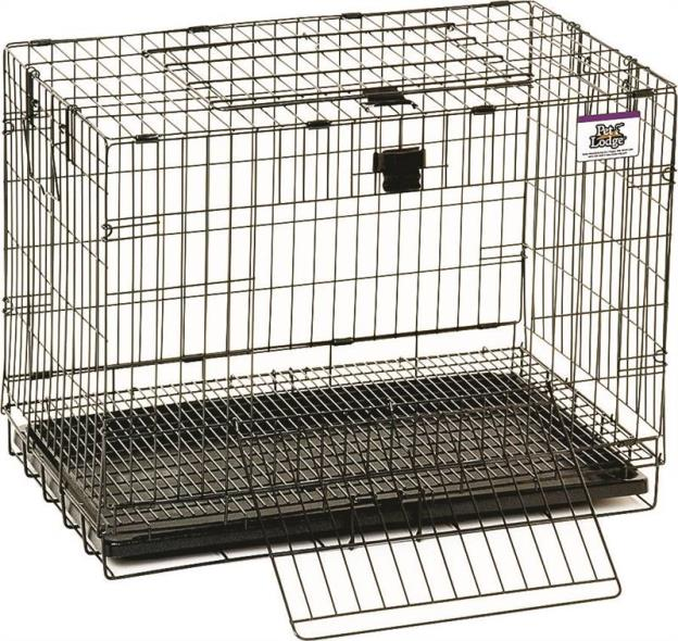 Pet Lodge 150903 Pop Up Rabbit Cage, 25 in L X 16 in W X 19 in H, Chew Proof Metal