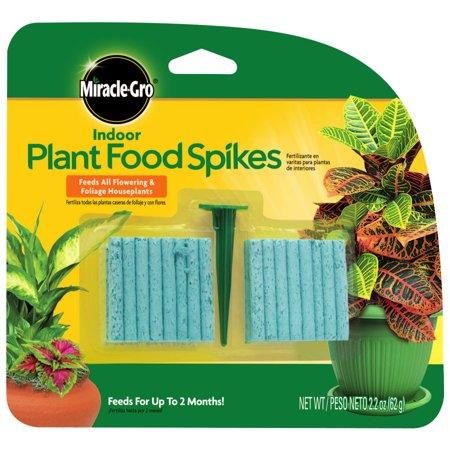 FOOD PLANT INDOOR SPIKES 48PK