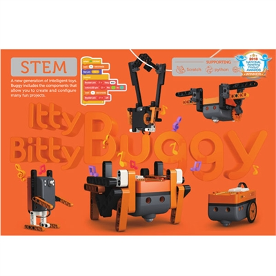 Itty Bitty Buggy STEM Toy