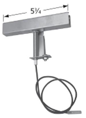 electrode; Brinkmann