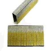 Pro-Fit 0687130 Medium Crown Staple, 1/2 in, 2 in Leg, 16 ga