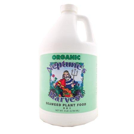 Neptune's Harvest Seaweed Fertilizer Green Label 128 Oz