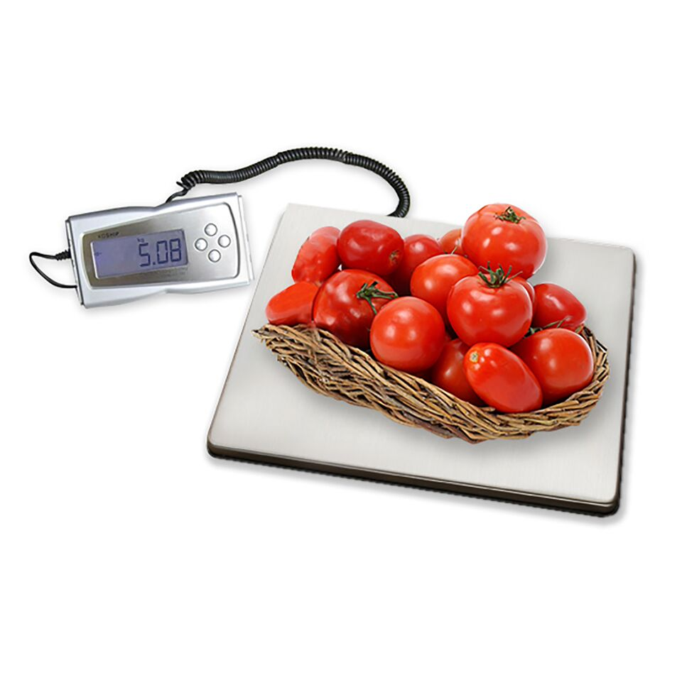 EXCALIBUR  ESD330 DIGITAL SCALE STAINLESS STEEL LUMINESCENT