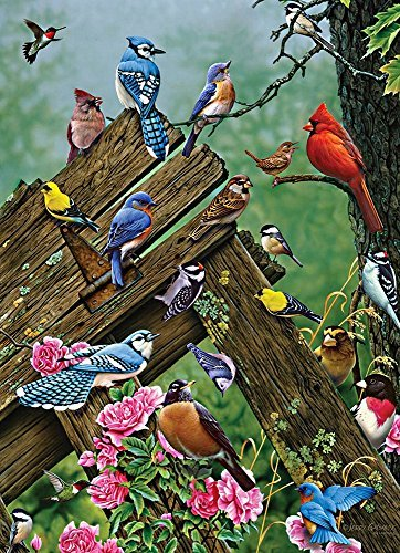 Birds of the Forest 1000 pcs
