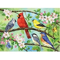 Bloomin' Birds 350 pc Family Puzzle