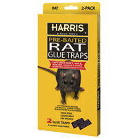 TRAP GLUE RAT PLASTIC 2PK