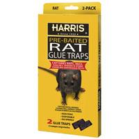 TRAP GLUE RAT 2 PK