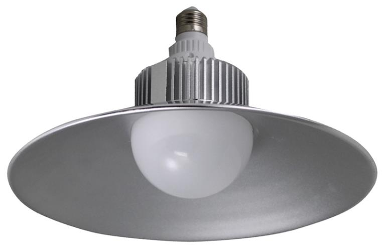 BULB LIGHT UTILITY LED 2500 L