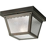 1 60 Watts Medium CTC Outdoor Ceiling Fixture