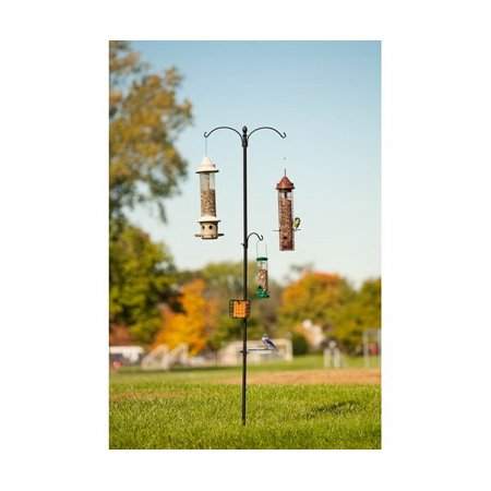 "85"" Two Way Bird Station, Black"