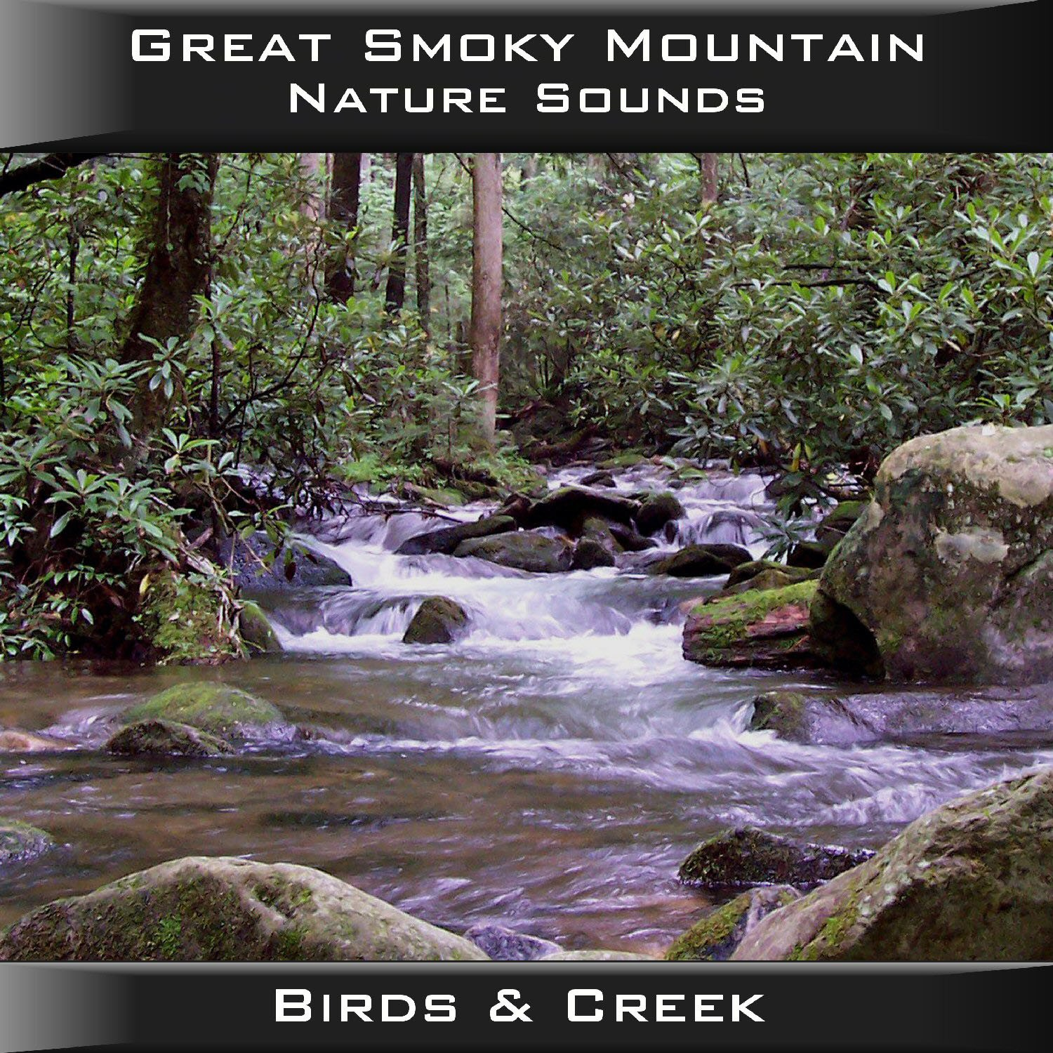 Great Smoky Mountain Birds & Creek CD