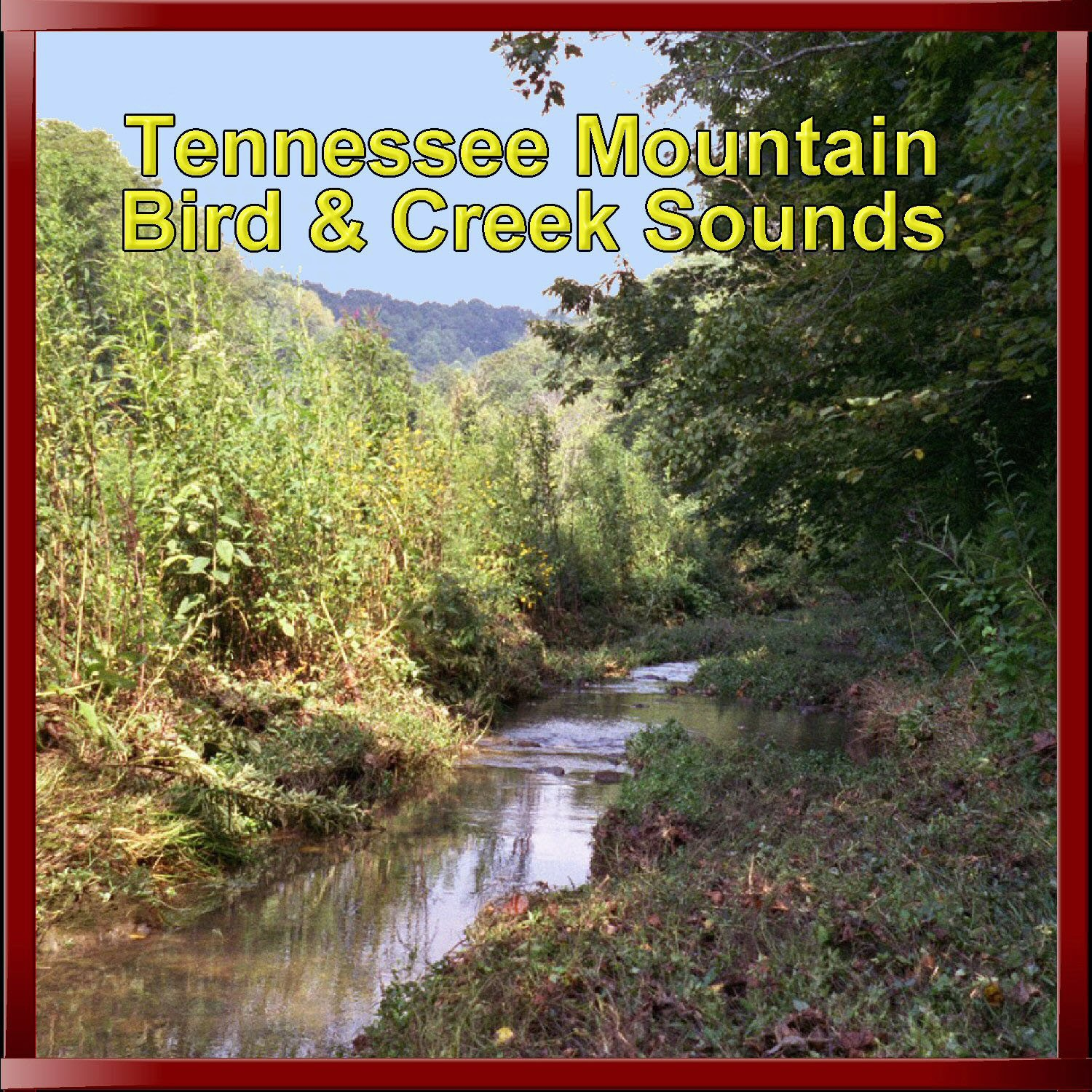 Tennessee Mountain Bird & Creek Sounds CD