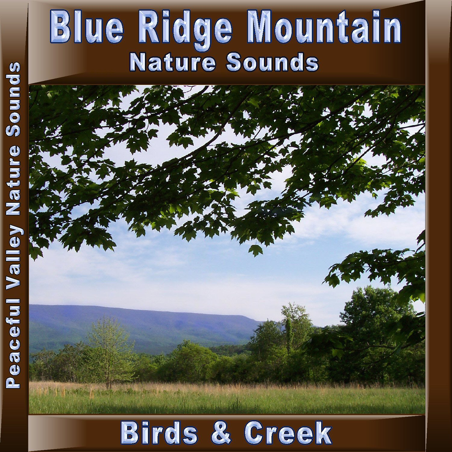 Blue Ridge Mountain Birds & Creek CD