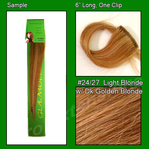 #24/27 Light Blonde w/ Golden Blonde Highlights Sample