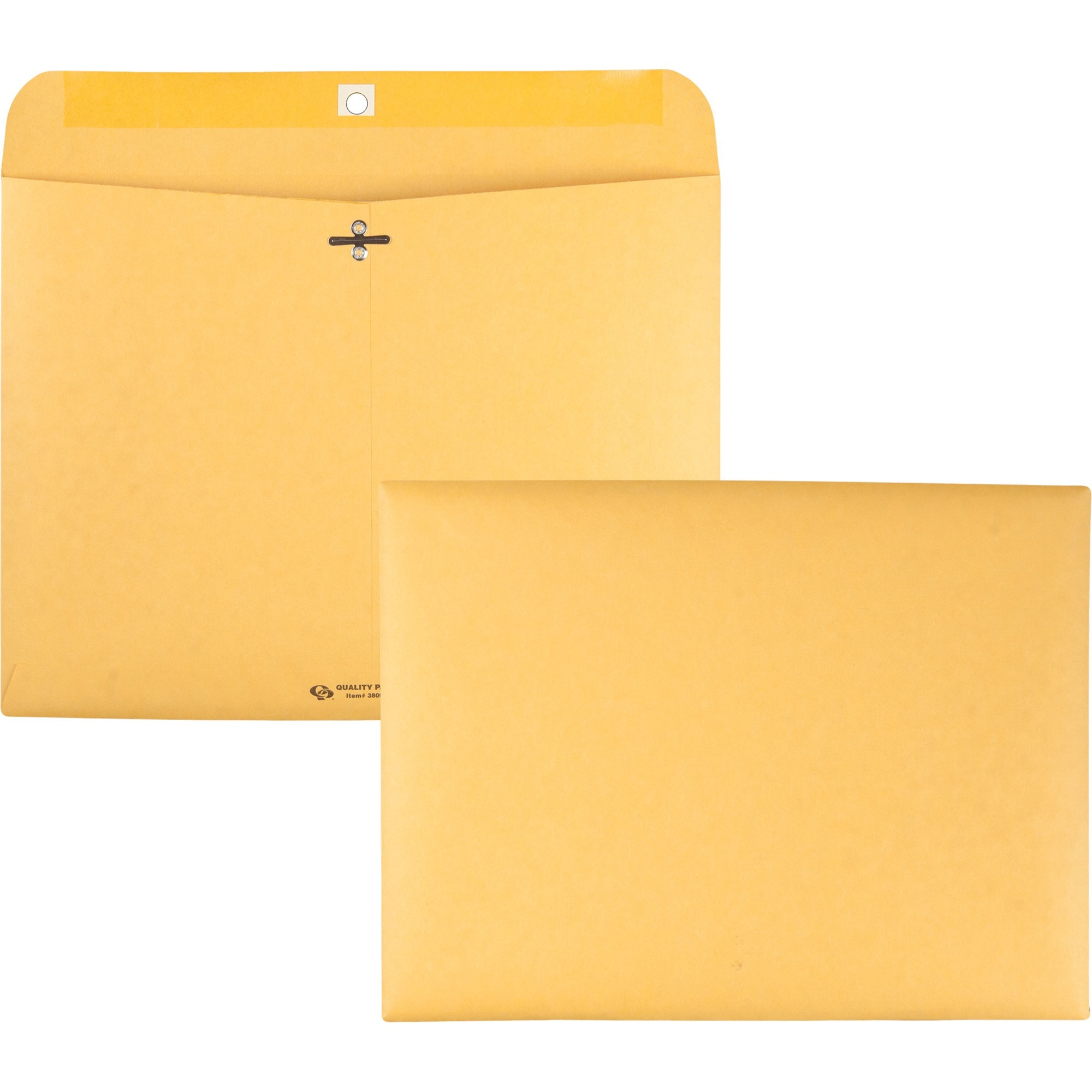 Redi File Clasp Envelope, 12 x 9, Brown Kraft, 100/Box