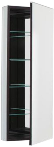 16 X 40 Cabinet Flat Mirror Door Black