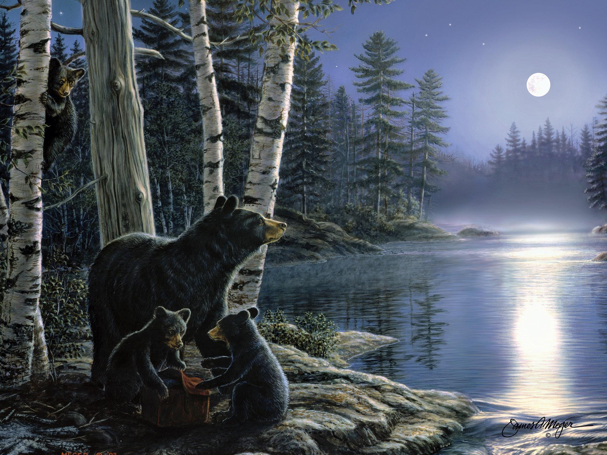 """16"""" X 12""""  LED Wall Art - Bears / Moon"""