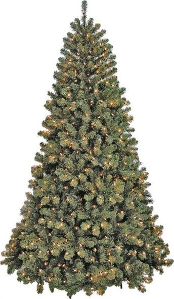 TREE NOBLE FIR CLR 7FT