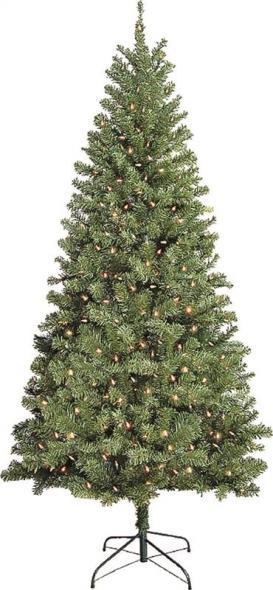 TREE DOUGLAS 7FT MULTI CUL