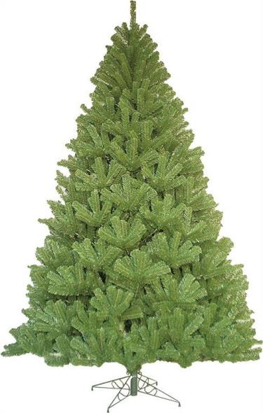 7'0 NOBLE FIR TREE WIDE PROFIL