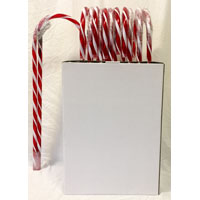 CANDY CANE 5FT PRELIT PDQ