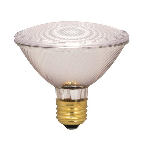 SATCO HALOGEN FLOOD LAMP PAR30, 39 WATT, 130 VOLT, MEDIUM BASE, CLEAR, NFL 34