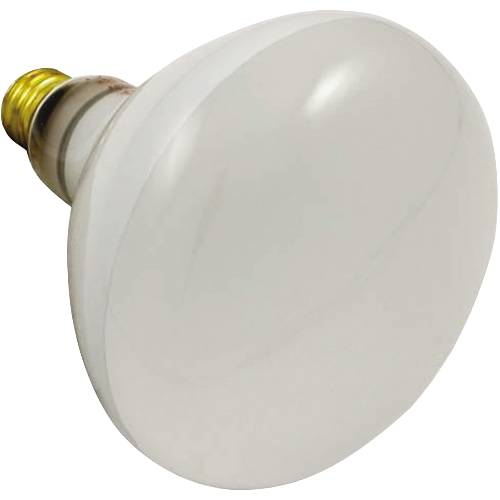 REFLECTOR POOL BULB 500 WATT, 120 VOLT SHORT STEM