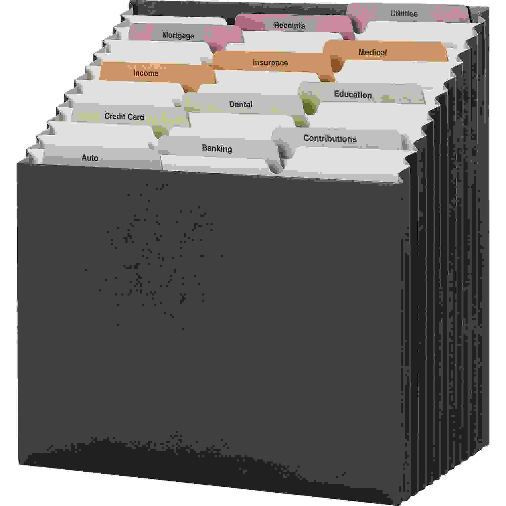 12-Pocket Stadium File, 12 1/4 x 13 5/8, Navy, Letter