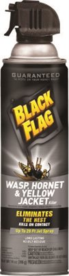 BLACK FLAG� WASP & HORNET KILLER, AEROSOL