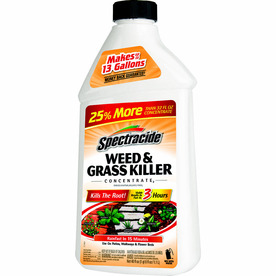 KILLER WEED/GRASS CONCENT 40OZ