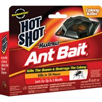 BAIT ANT HOT SHOT