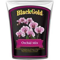 MIX ORCHID BG 8 QT