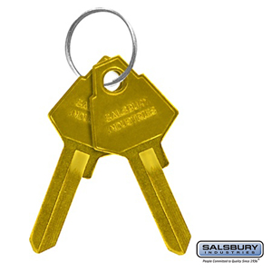 Key Blanks v for Key Padlocks of Military TA-50 and Military Storage Cabinets - Box of (50)