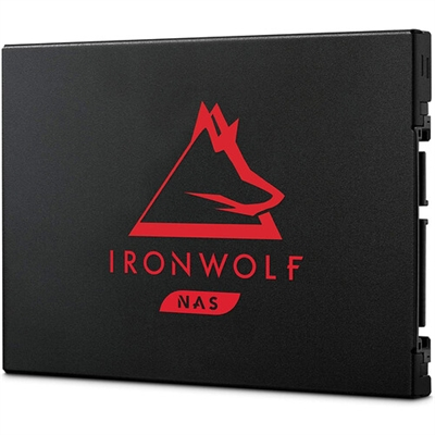 IronWolf 250G 125SSD SATA 6G