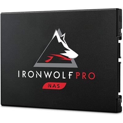 IronWolfPro 480G 125SSD SATA6G