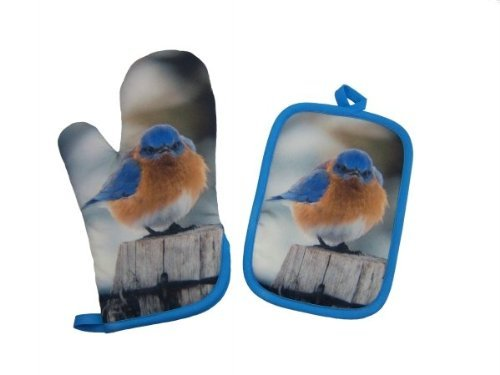 Potholder and Oven Mitt Set Mad Bluebird